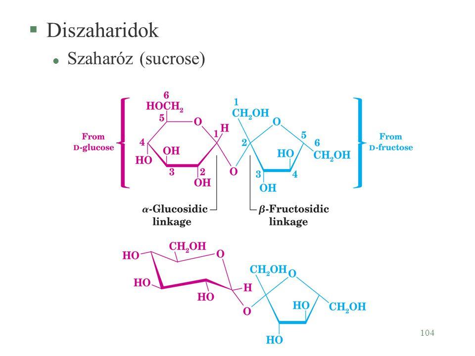 104 §Diszaharidok l Szaharóz (sucrose)