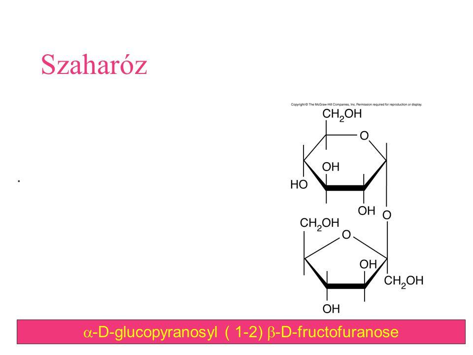 105 Szaharóz.  -D-glucopyranosyl ( 1-2)  -D-fructofuranose
