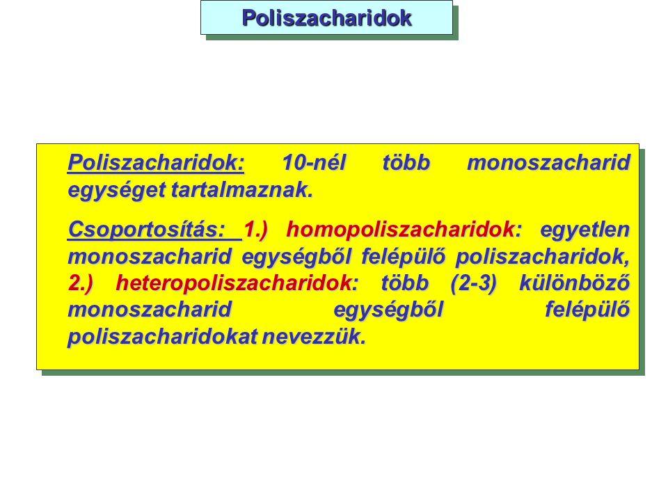 PoliszacharidokPoliszacharidok Poliszacharidok: 10-nél több monoszacharid egységet tartalmaznak. Csoportosítás: 1.) homopoliszacharidok: egyetlen mono