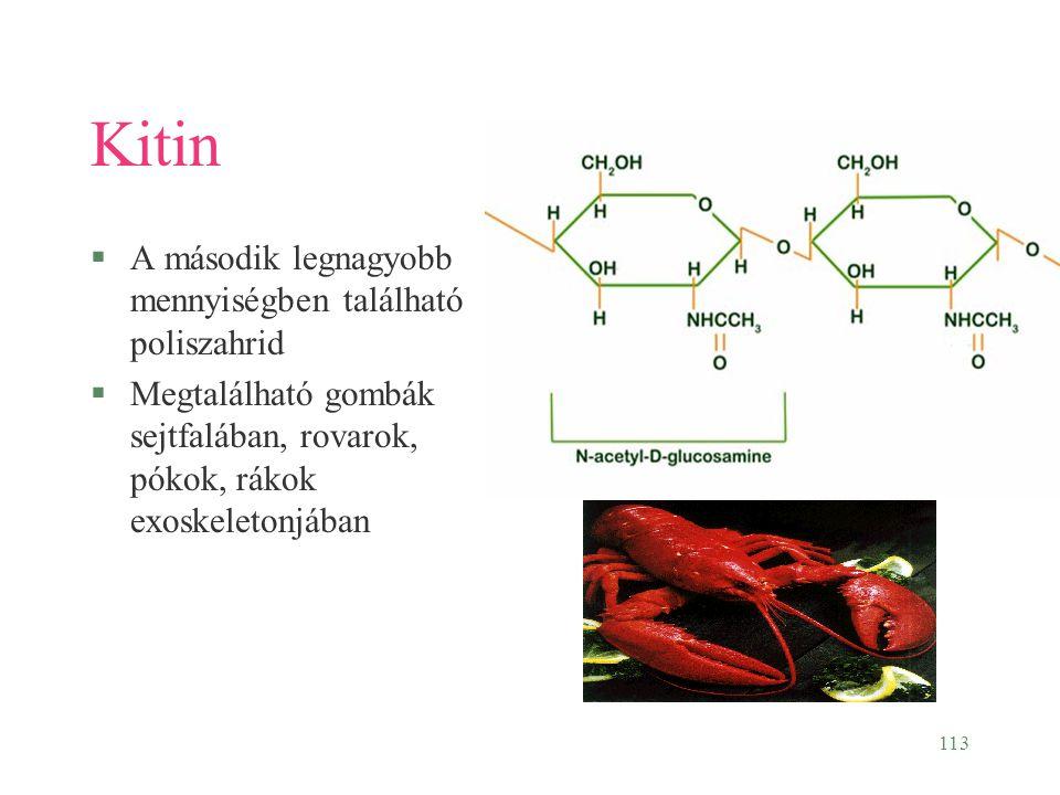 113 Kitin §A második legnagyobb mennyiségben található poliszahrid §Megtalálható gombák sejtfalában, rovarok, pókok, rákok exoskeletonjában