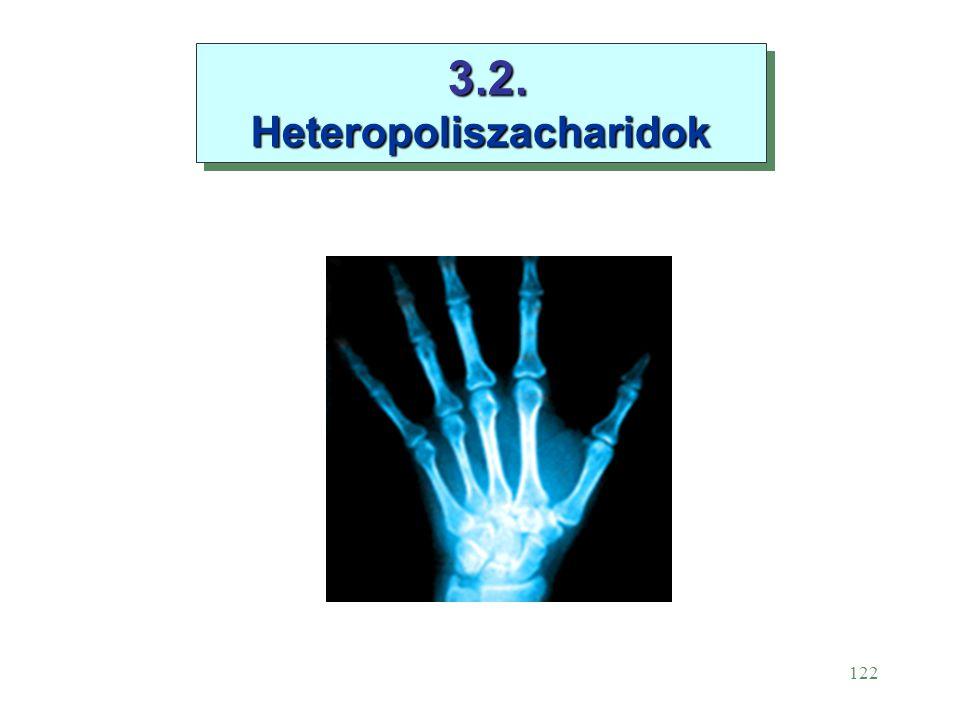122 3.2. Heteropoliszacharidok 3.2. Heteropoliszacharidok