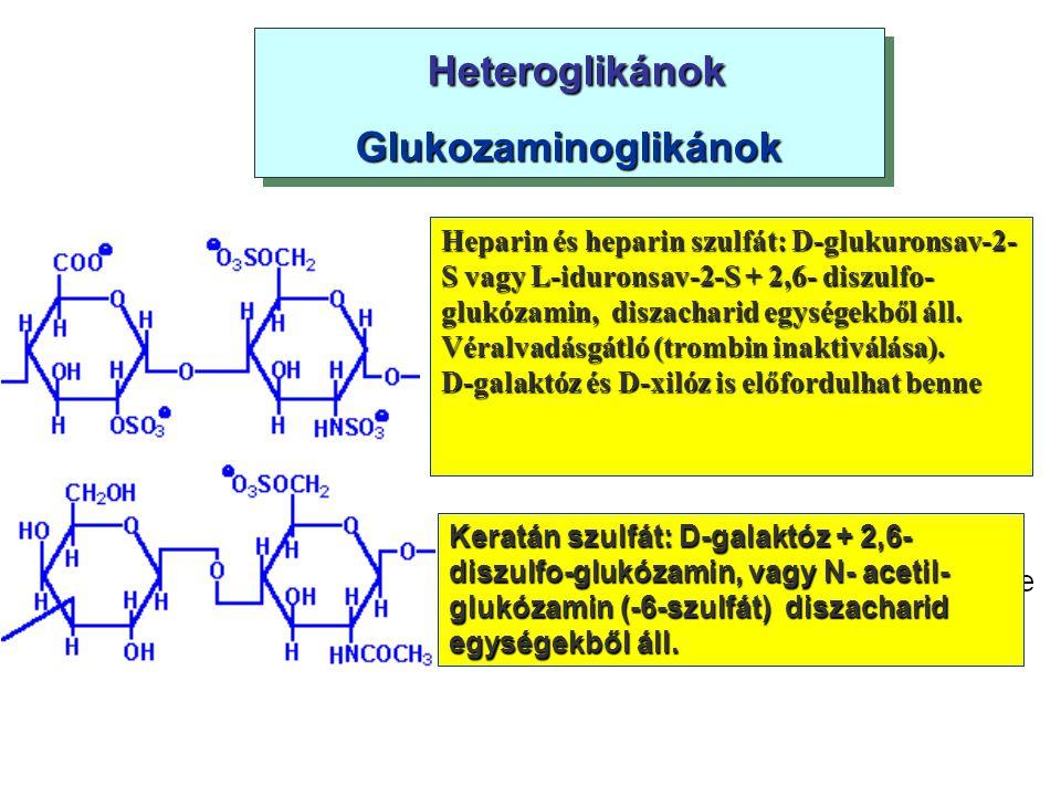 Heteroglikánok Heteroglikánok Glukozaminoglikánok Heteroglikánok Heteroglikánok Glukozaminoglikánok Heparin és heparin szulfát: D-glukuronsav-2- S vag