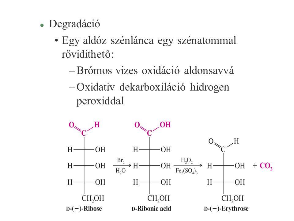 28 l Degradáció Egy aldóz szénlánca egy szénatommal rövidíthető: –Brómos vizes oxidáció aldonsavvá –Oxidativ dekarboxiláció hidrogen peroxiddal