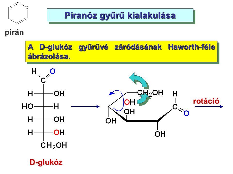 Piranóz gyűrű kialakulása rotáció D-glukóz A D-glukóz gyűrűvé záródásának Haworth-féle ábrázolása. pirán