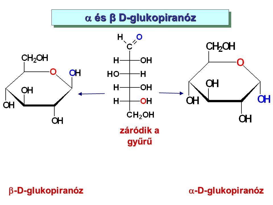 45  és β D-glukopiranóz záródik a gyűrű  -D-glukopiranóz  -D-glukopiranóz