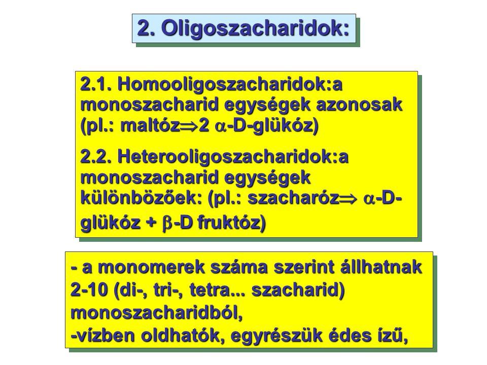 - a monomerek száma szerint állhatnak 2-10 (di-, tri-, tetra... szacharid) monoszacharidból, -vízben oldhatók, egyrészük édes ízű, - a monomerek száma