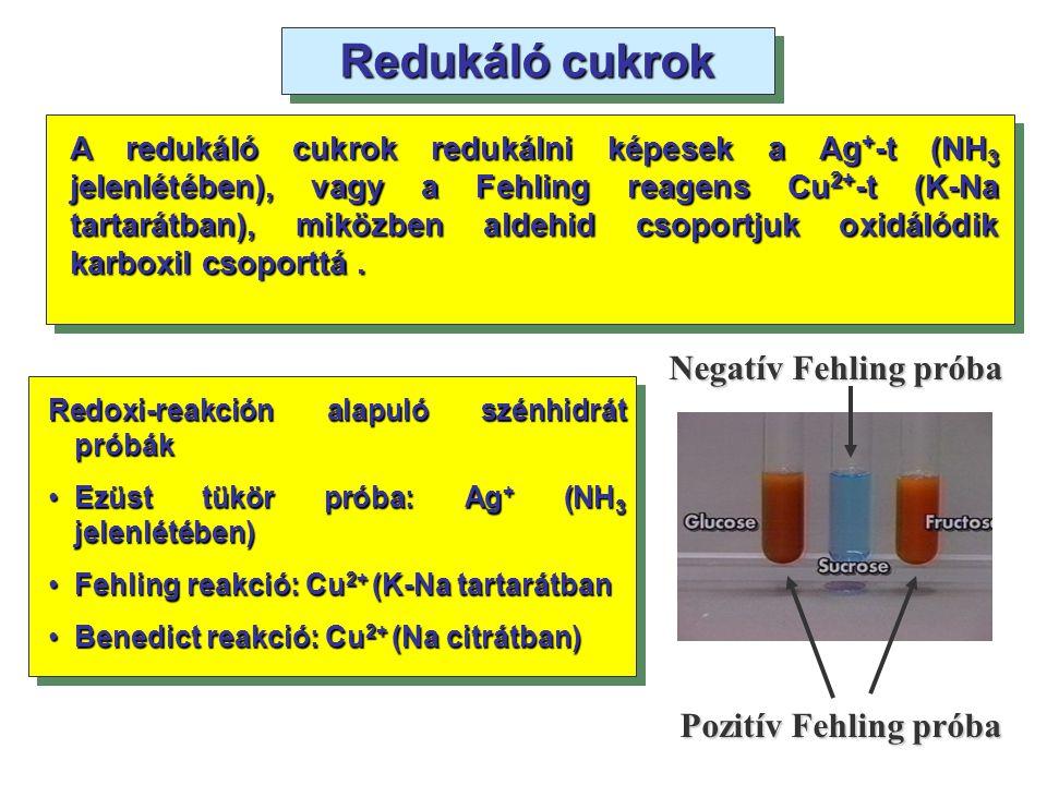 Redukáló cukrok A redukáló cukrok redukálni képesek a Ag + -t (NH 3 jelenlétében), vagy a Fehling reagens Cu 2+ -t (K-Na tartarátban), miközben aldehi