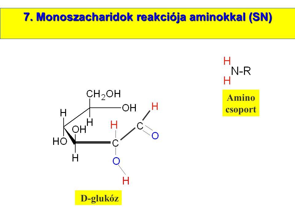 D-glukóz Amino csoport 7. Monoszacharidok reakciója aminokkal (SN)