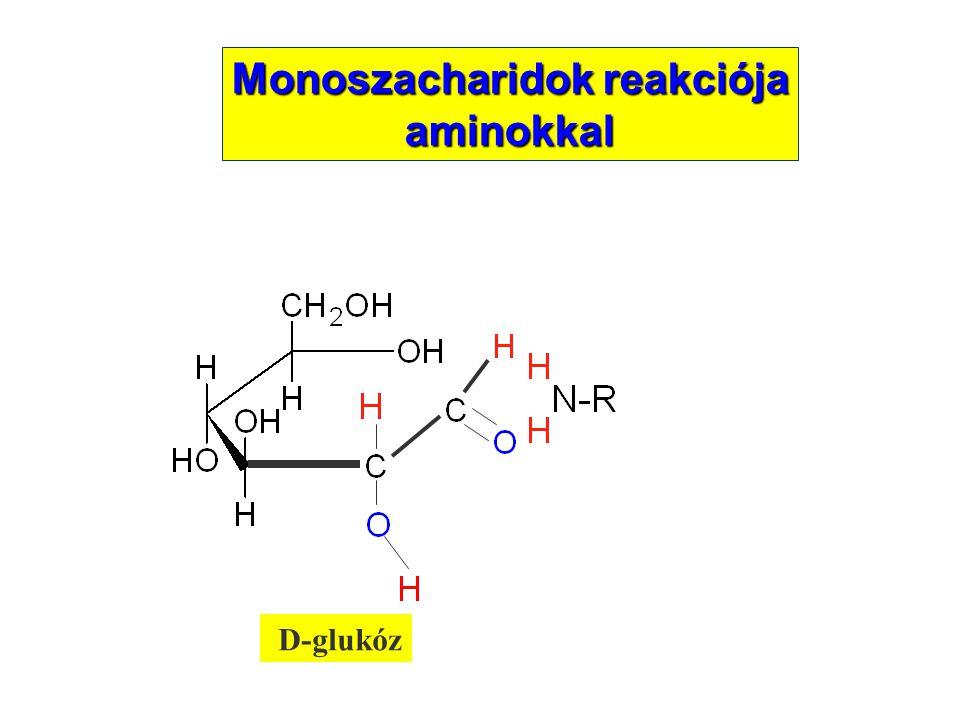 D-glukóz Monoszacharidok reakciója aminokkal