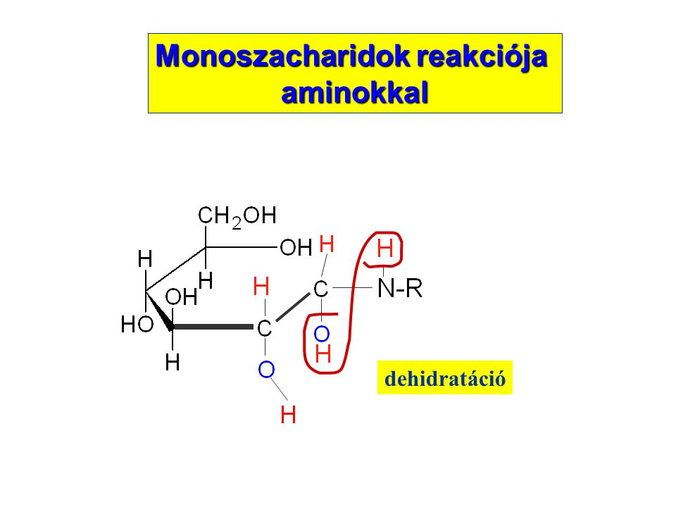 dehidratáció Monoszacharidok reakciója aminokkal