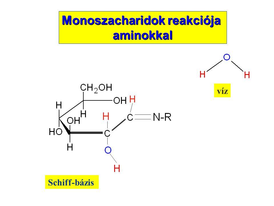 Schiff-bázis víz Monoszacharidok reakciója aminokkal