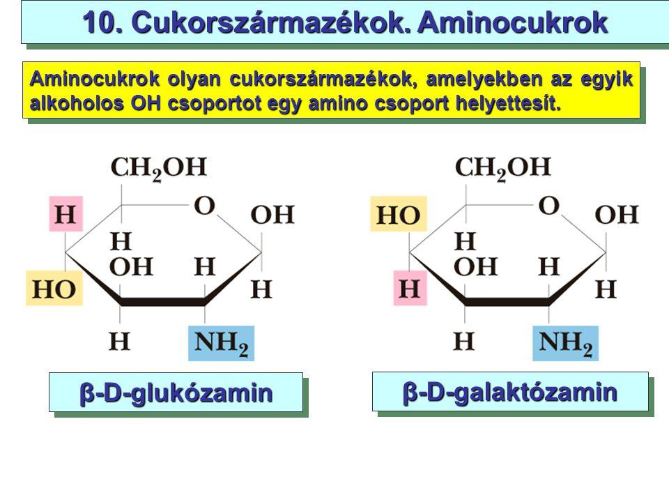 91 10. Cukorszármazékok. Aminocukrok β-D-glukózamin β-D-galaktózamin Aminocukrok olyan cukorszármazékok, amelyekben az egyik alkoholos OH csoportot eg