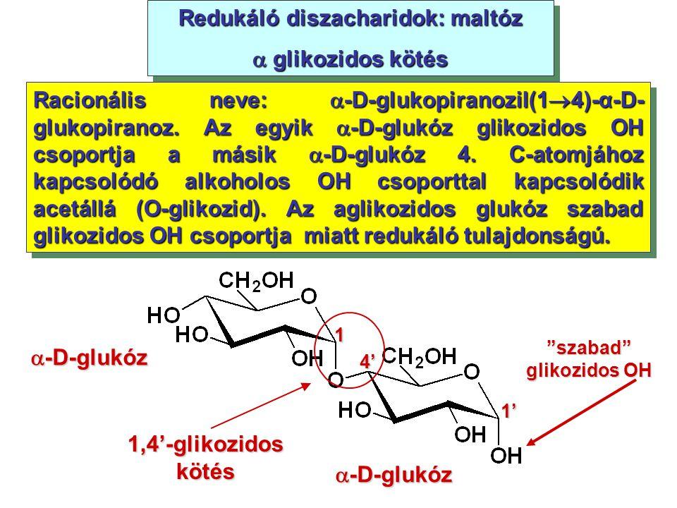 Redukáló diszacharidok: maltóz  glikozidos kötés Redukáló diszacharidok: maltóz  glikozidos kötés Racionális neve:  -D-glukopiranozil(1  4)-α-D- g