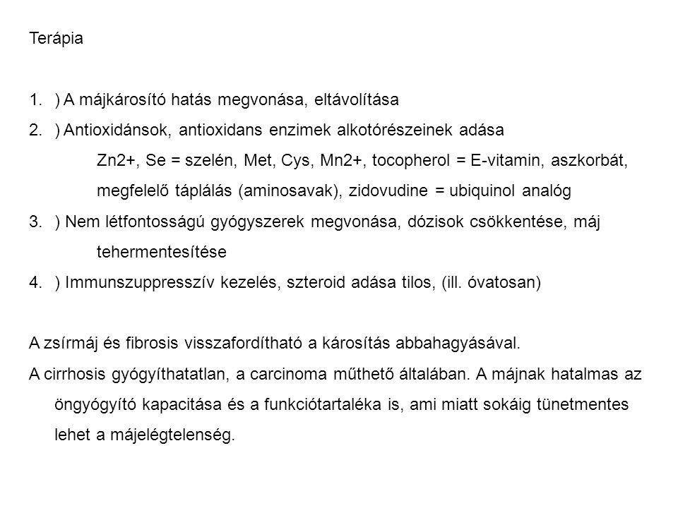 Terápia 1.) A májkárosító hatás megvonása, eltávolítása 2.) Antioxidánsok, antioxidans enzimek alkotórészeinek adása Zn2+, Se = szelén, Met, Cys, Mn2+, tocopherol = E-vitamin, aszkorbát, megfelelő táplálás (aminosavak), zidovudine = ubiquinol analóg 3.) Nem létfontosságú gyógyszerek megvonása, dózisok csökkentése, máj tehermentesítése 4.) Immunszuppresszív kezelés, szteroid adása tilos, (ill.