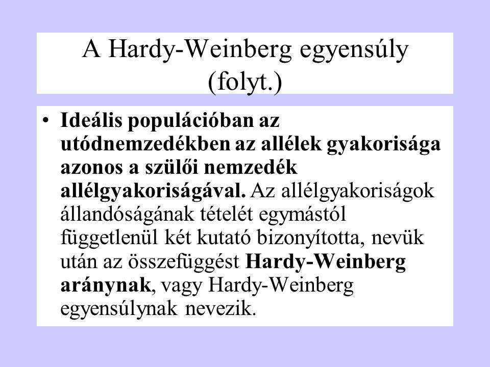 A Hardy-Weinberg egyensúly (folyt.) Ideális populációban az utódnemzedékben az allélek gyakorisága azonos a szülői nemzedék allélgyakoriságával. Az al