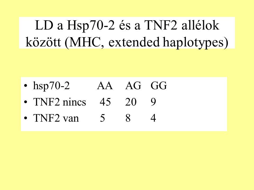 LD a Hsp70-2 és a TNF2 allélok között (MHC, extended haplotypes) hsp70-2 AAAGGG TNF2 nincs45209 TNF2 van 584