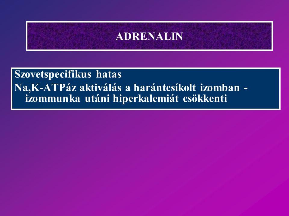 ADRENALIN Szovetspecifikus hatas Na,K-ATPáz aktiválás a harántcsíkolt izomban - izommunka utáni hiperkalemiát csökkenti