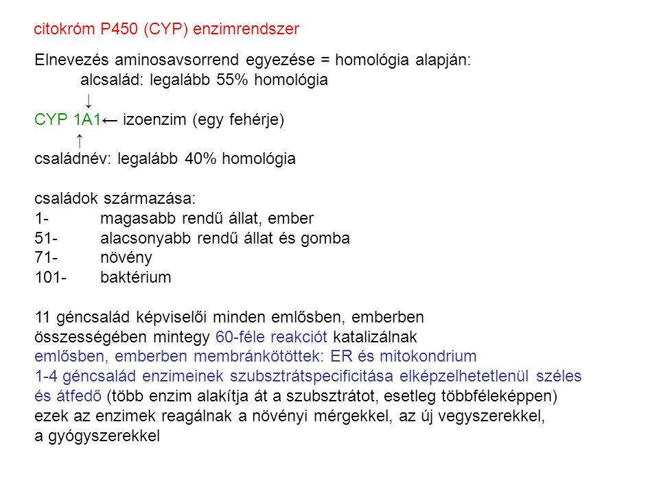 citokróm P450 (CYP) enzimrendszer Elnevezés aminosavsorrend egyezése = homológia alapján: alcsalád: legalább 55% homológia ↓ CYP 1A1← izoenzim (egy fehérje) ↑ családnév: legalább 40% homológia családok származása: 1- magasabb rendű állat, ember 51-alacsonyabb rendű állat és gomba 71-növény 101-baktérium 11 géncsalád képviselői minden emlősben, emberben összességében mintegy 60-féle reakciót katalizálnak emlősben, emberben membránkötöttek: ER és mitokondrium 1-4 géncsalád enzimeinek szubsztrátspecificitása elképzelhetetlenül széles és átfedő (több enzim alakítja át a szubsztrátot, esetleg többféleképpen) ezek az enzimek reagálnak a növényi mérgekkel, az új vegyszerekkel, a gyógyszerekkel