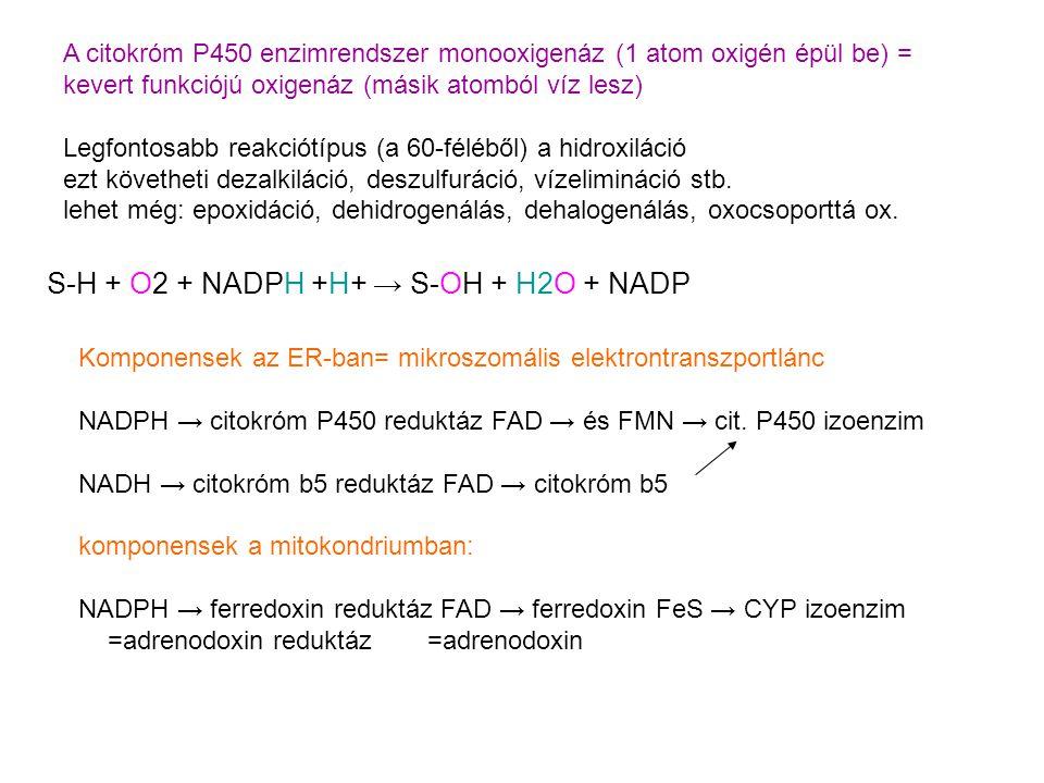 A citokróm P450 enzimrendszer monooxigenáz (1 atom oxigén épül be) = kevert funkciójú oxigenáz (másik atomból víz lesz) Legfontosabb reakciótípus (a 60-féléből) a hidroxiláció ezt követheti dezalkiláció, deszulfuráció, vízelimináció stb.