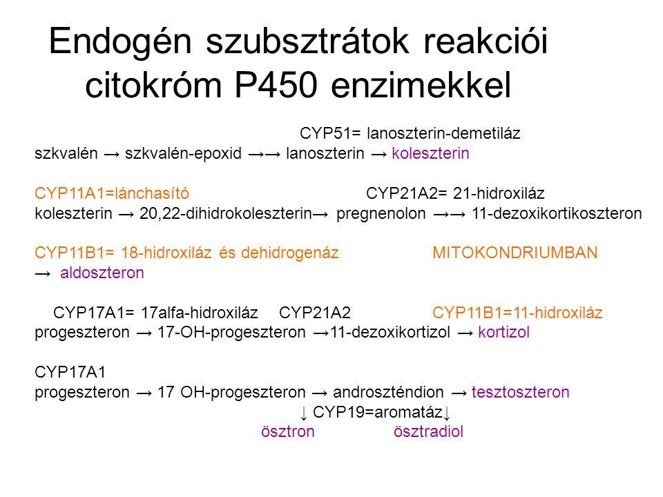 CYP7A1vagy 7BCYP27A1 és CYP8B1 koleszterin → 7alfa-hidroxikoleszterin → kólsav, kenodezoxikólsav (epesavak) CYP46CYP39 koleszterin → 24-OH-koleszterin →7alfa,24-OH-koleszterin → kólsav,kenodezoxikólsav CYP27B1 kolekalciferol =D3-vitamin → 25-OH-kolekalciferol → 1,25-dihidroxikolekalciferol= máj vese,csont placenta kalcitriol (hormon) CYP4=deszaturázokCYP8A1= prosztaciklin-szintáz linolsav → arachidonsav → prosztaglandin H2 → prosztaciklin ↓CYP5A1= tromboxán-szintáz tromboxán
