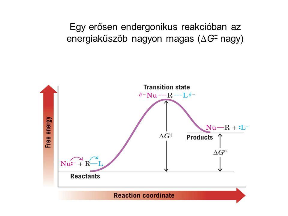 Egy erősen endergonikus reakcióban az energiaküszöb nagyon magas (  G ‡ nagy)