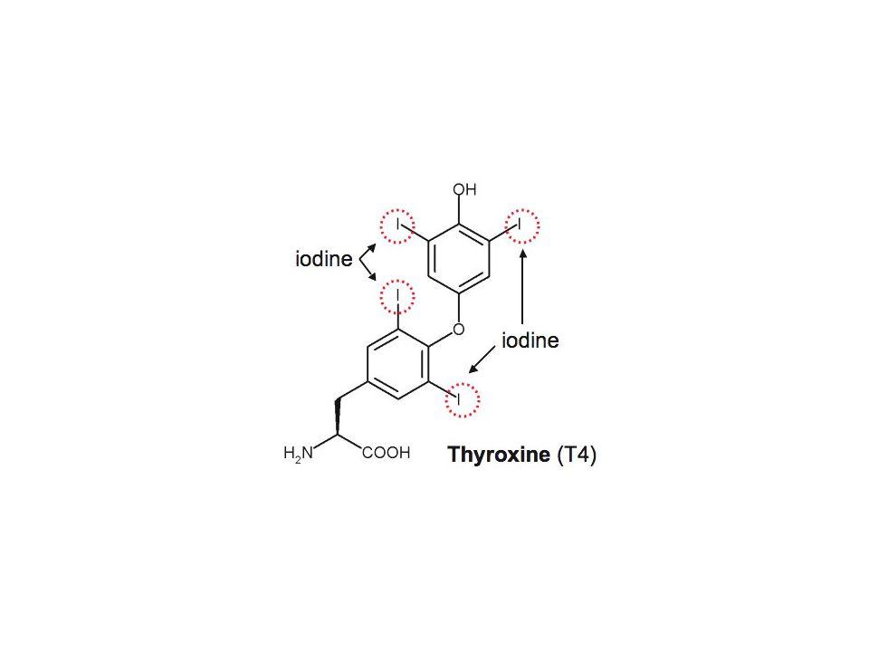 Az E1 reakció(monomolekuláris elimináció) Az E1 reakció karbokation intermedieren keresztül zajlik