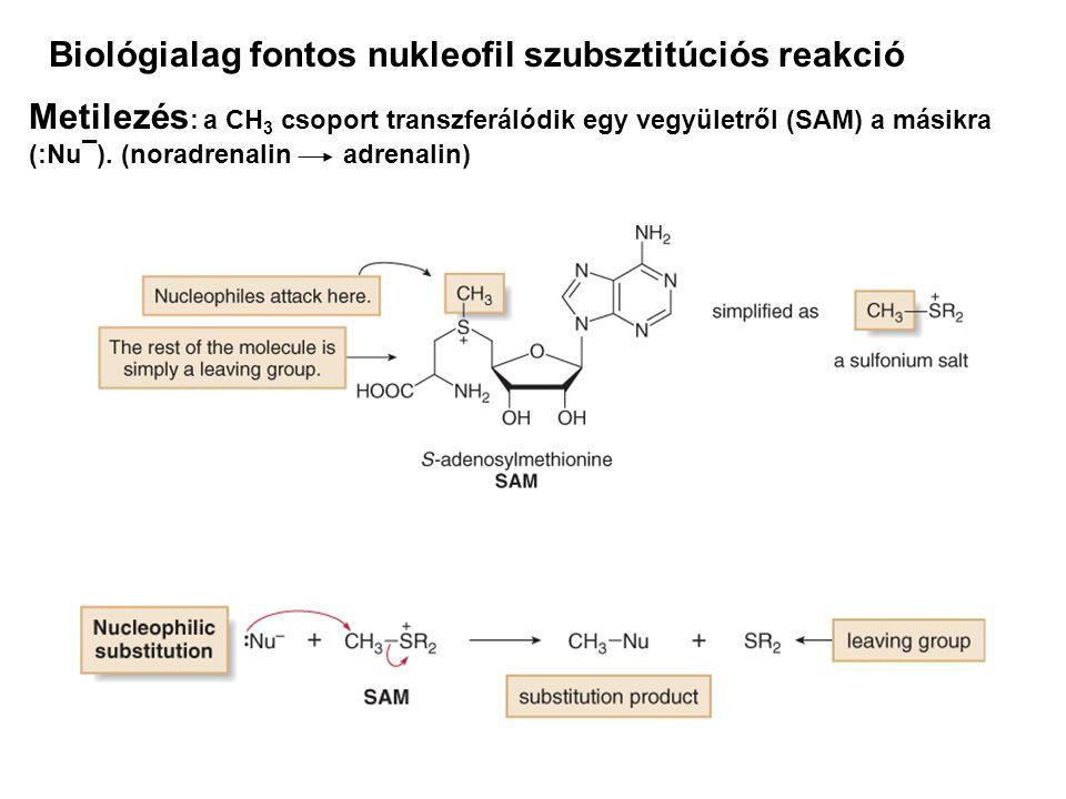 Biológialag fontos nukleofil szubsztitúciós reakció Metilezés : a CH 3 csoport transzferálódik egy vegyületről (SAM) a másikra (:Nu¯). (noradrenalin a