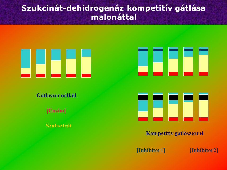 Kompetitív gátlás + S + I Ki = komplex disszicioációs állandó