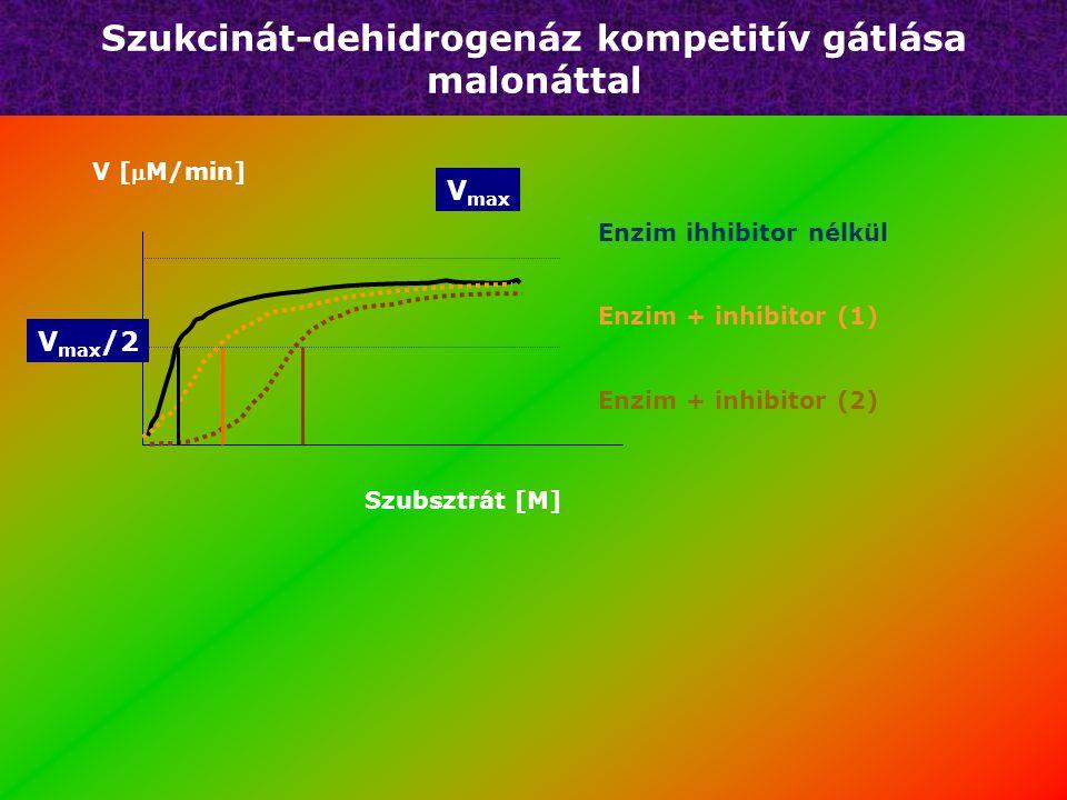 Kompetitív gátlás + S + I K i = komplex disszociációs állandó +P