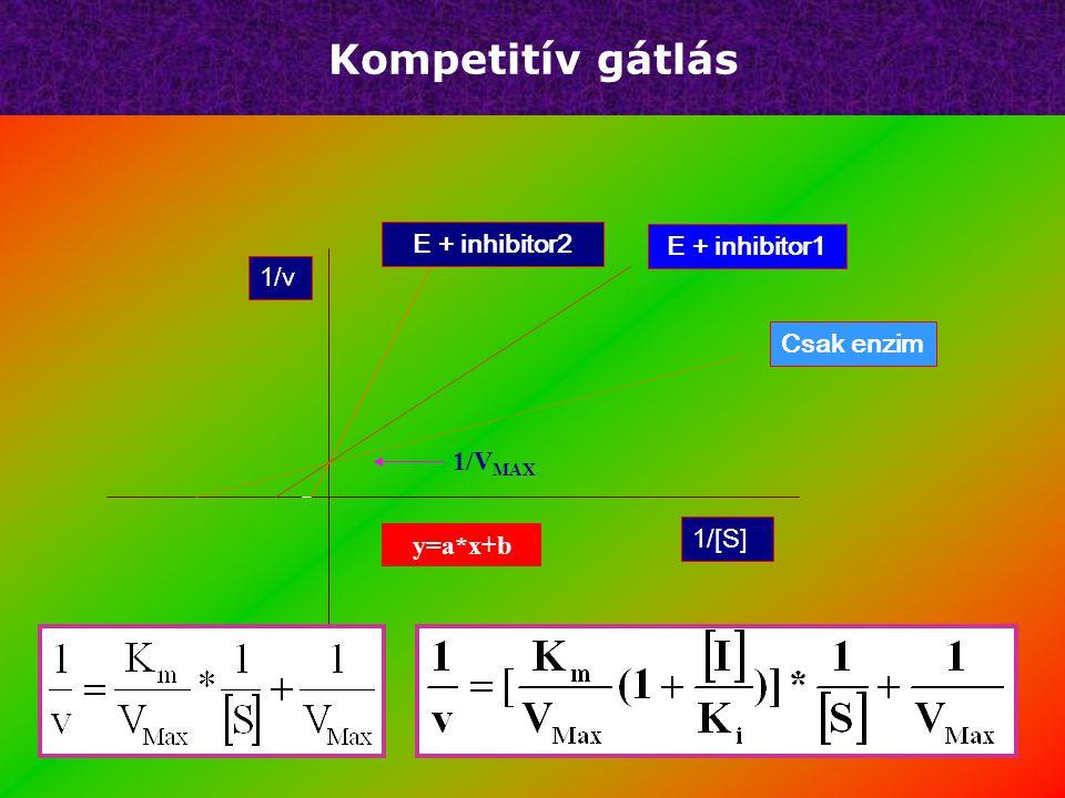 Kompetitív gátlás   Inhibitor K M értéket növeli, V max konstans   K I nem egyenlő K S   Gátlás mértéke függ a [S]/[I].