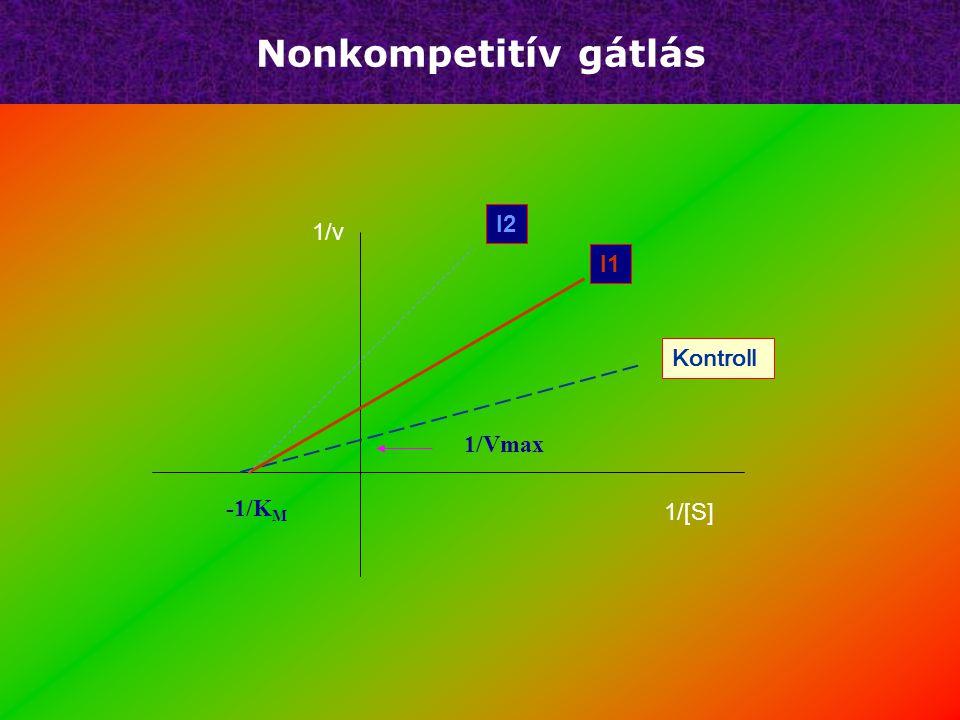 Nonkompetitív gátlás   A K M érték nem változik   V Max csökken   Az inhibitor mindig a szubsztrátkötő helyen kívül kapcsolódik   Az EIS inakt
