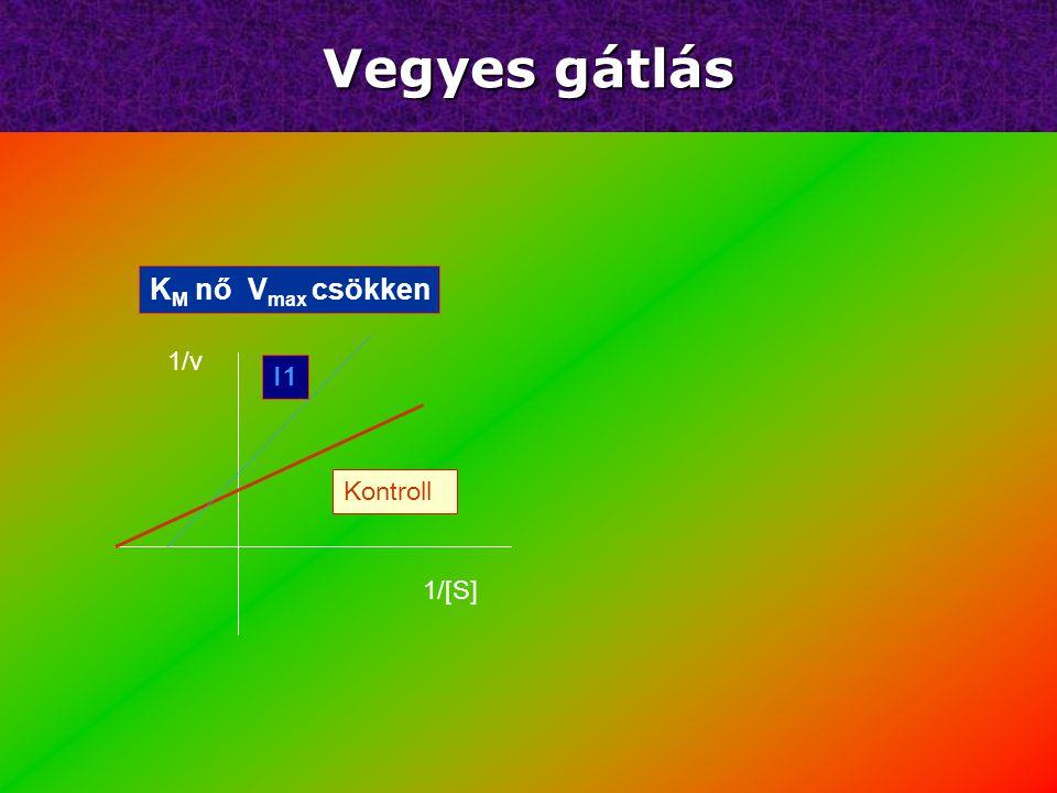 K M és V max csökken 1/[S] 1/v Kontroll I1 Unkompetitív gátlás