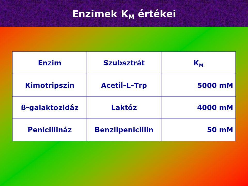 Enzimek K M értékei EnzimSzubsztrátKMKM KimotripszinAcetil-L-Trp5000 mM ß-galaktozidázLaktóz4000 mM PenicillinázBenzilpenicillin50 mM