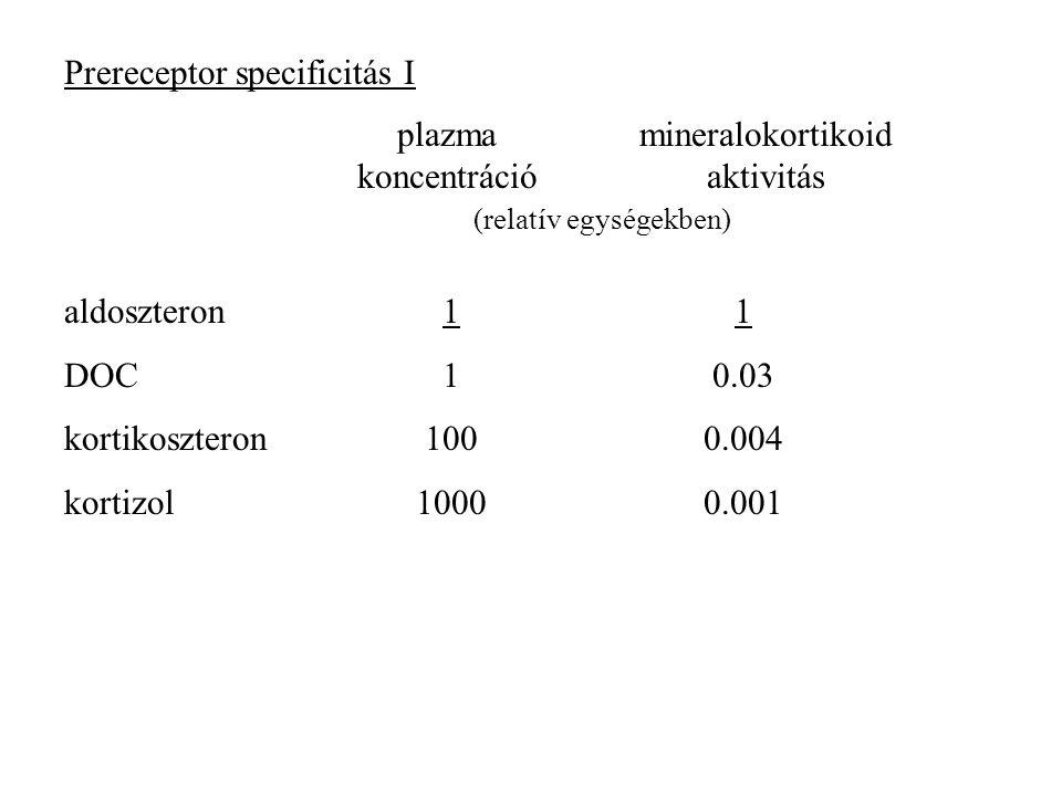 Prereceptor specificitás I aldoszteron DOC kortikoszteron kortizol 1 100 1000 1 0.03 0.004 0.001 plazma koncentráció mineralokortikoid aktivitás (relatív egységekben)