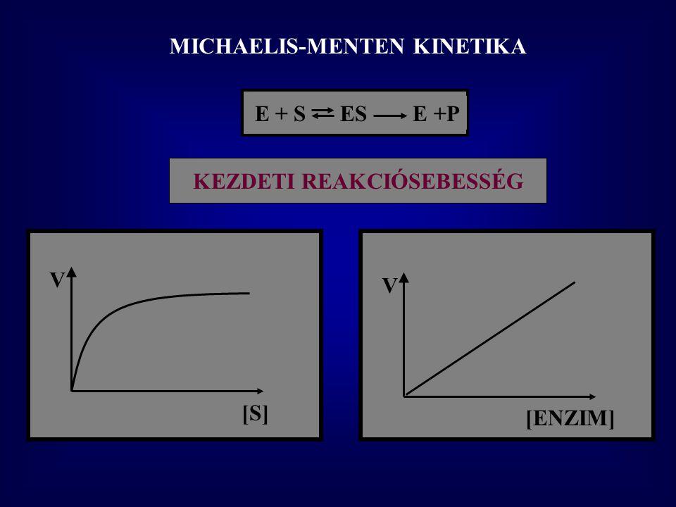 """IZOENZIMEK Definíció: azonos funkció, de: eltérő primer szerkezet, Példa: Eltérő K M -ű izoenzimek HEXOKINÁZ – GLUKOKINÁZ Glukóz + ATP → Glukóz-6P + ADP K M Hexokináz=0.05 mM glukózra K M Glukokináz=10 mM glukózra Hexokináz – """"perifériás szervek Glukokináz – máj (pancreas  sejtek)"""