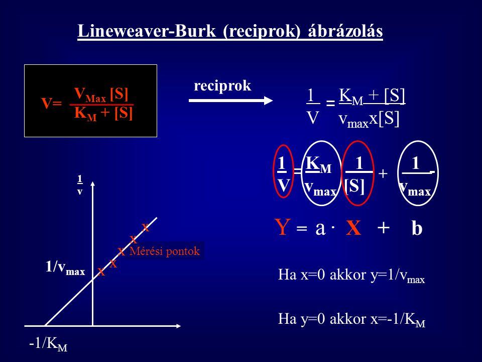 [S] V KMKM v max x[S] V= K M +[S] Ha a [S] kicsi (K M -hez képest elhanyagolható) v max x[S] V= K M V lineárisan változik A [S]-val (elsőrendű) Ha a [
