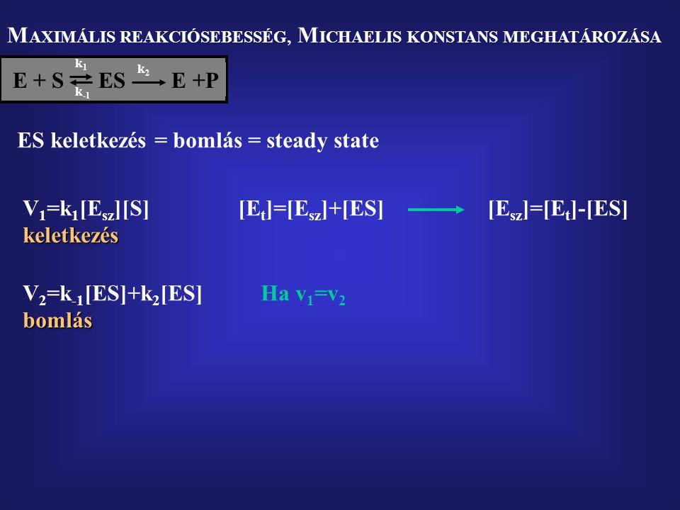 M AXIMÁLIS REAKCIÓSEBESSÉG, M ICHAELIS KONSTANS MEGHATÁROZÁSA E + S  ES E +P k1k1 k2k2 k -1 ES keletkezés = bomlás = steady state V 1 =k 1 [E sz ][S]keletkezés [E t ]=[E sz ]+[ES][E sz ]=[E t ]-[ES] V 2 =k -1 [ES]+k 2 [ES]bomlás Ha v 1 =v 2
