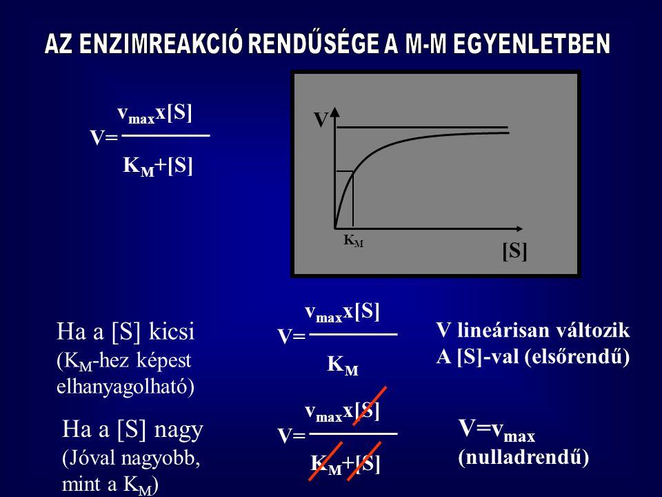[S] V KMKM v max x[S] V= K M +[S] Ha a [S] kicsi (K M -hez képest elhanyagolható) v max x[S] V= K M V lineárisan változik A [S]-val (elsőrendű) Ha a [S] nagy (Jóval nagyobb, mint a K M ) v max x[S] V= K M +[S] V=v max (nulladrendű)
