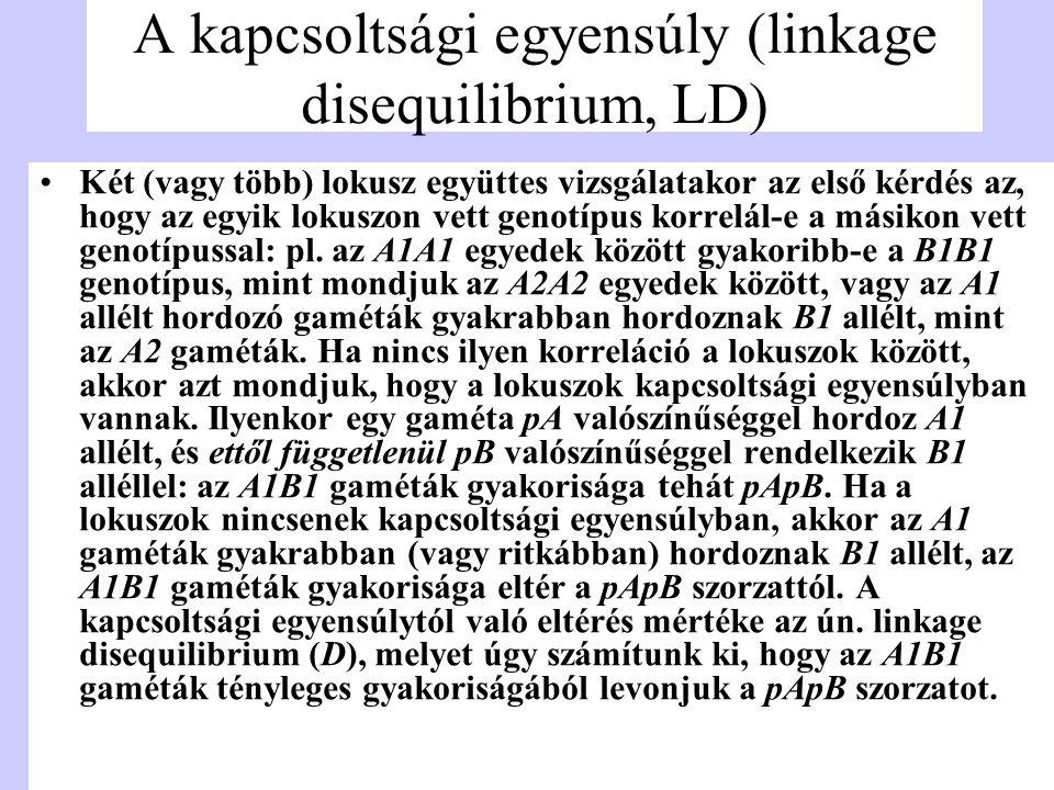 A kapcsoltsági egyensúly (linkage disequilibrium, LD) Két (vagy több) lokusz együttes vizsgálatakor az első kérdés az, hogy az egyik lokuszon vett gen