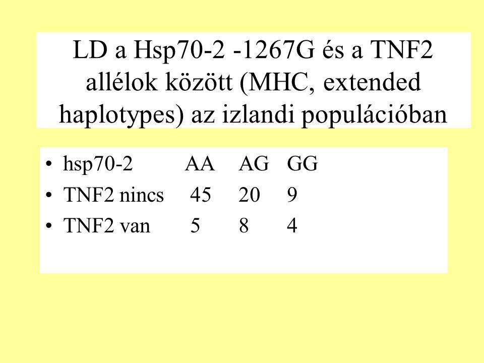 LD a Hsp70-2 -1267G és a TNF2 allélok között (MHC, extended haplotypes) az izlandi populációban hsp70-2 AAAGGG TNF2 nincs45209 TNF2 van 584