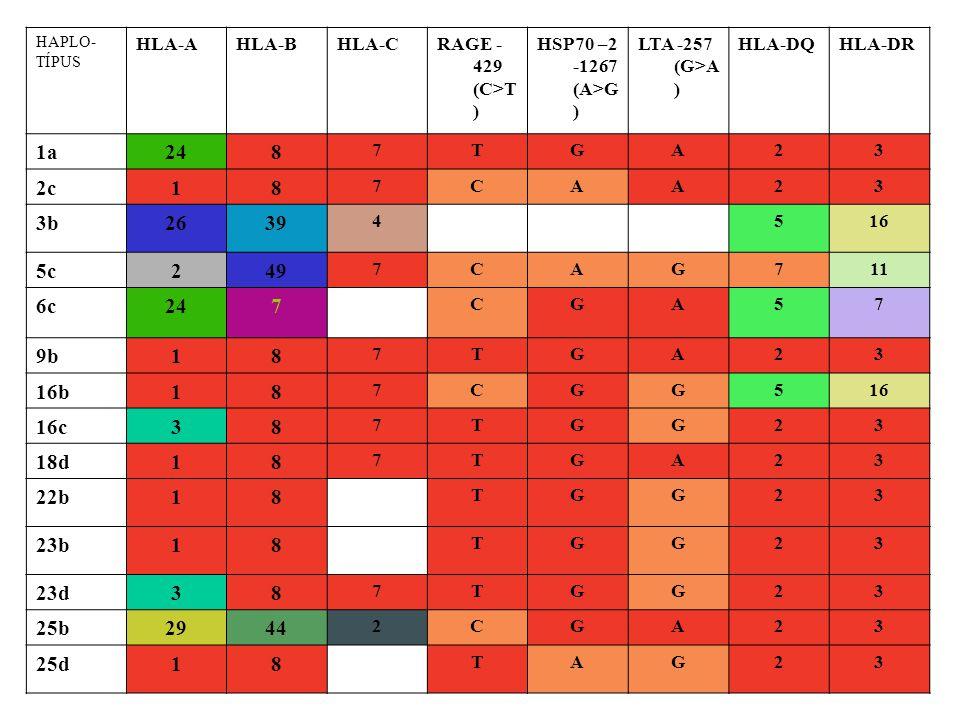 HAPLO- TÍPUS HLA-AHLA-BHLA-CRAGE - 429 (C>T ) HSP70 –2 -1267 (A>G ) LTA -257 (G>A ) HLA-DQHLA-DR 1a248 7TGA23 2c18 7CAA23 3b2639 4516 5c249 7CAG711 6c