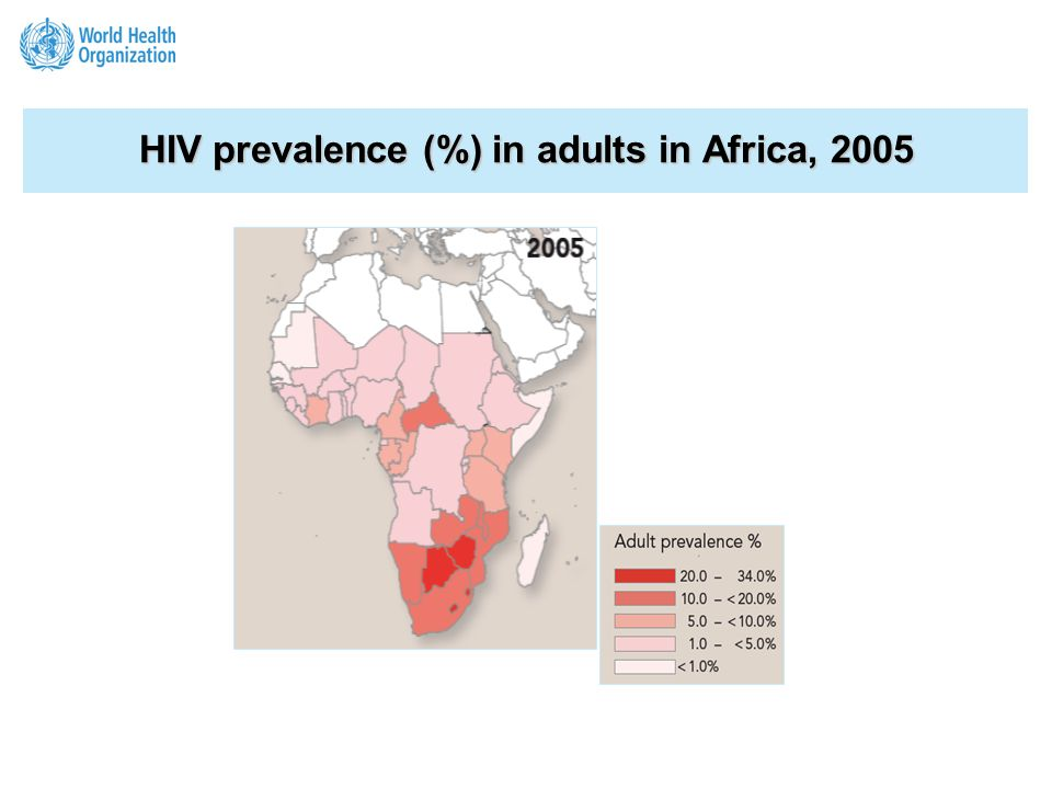 HIV prevalence (%) in adults in Africa, 2005 2.5