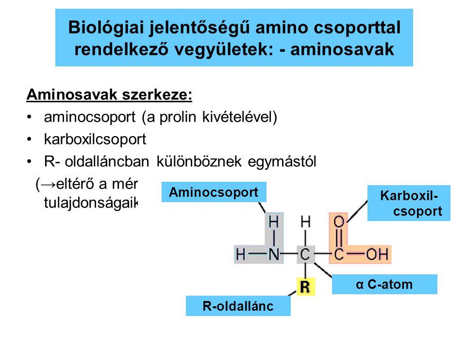 32 Aminosavak szerkeze: aminocsoport (a prolin kivételével) karboxilcsoport R- oldalláncban különböznek egymástól (→eltérő a méretük, töltésük, fiziko