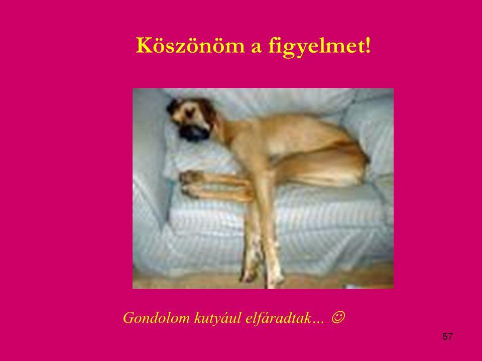 57 Köszönöm a figyelmet! Gondolom kutyául elfáradtak…