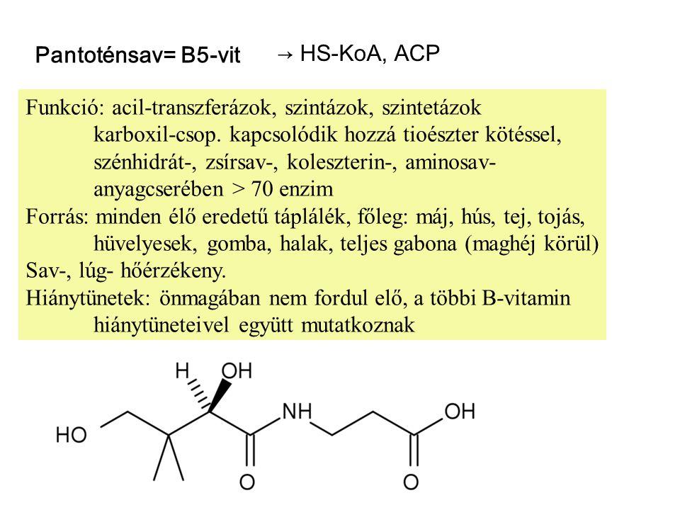 Pantoténsav= B5-vit → HS-KoA, ACP Funkció: acil-transzferázok, szintázok, szintetázok karboxil-csop.