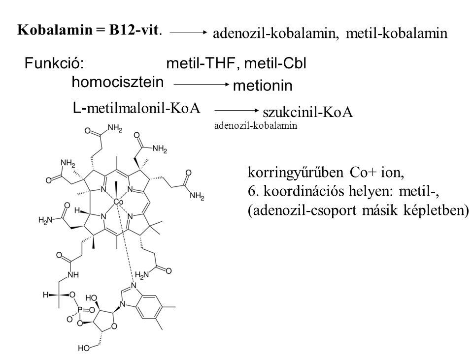 Kobalamin = B12-vit.