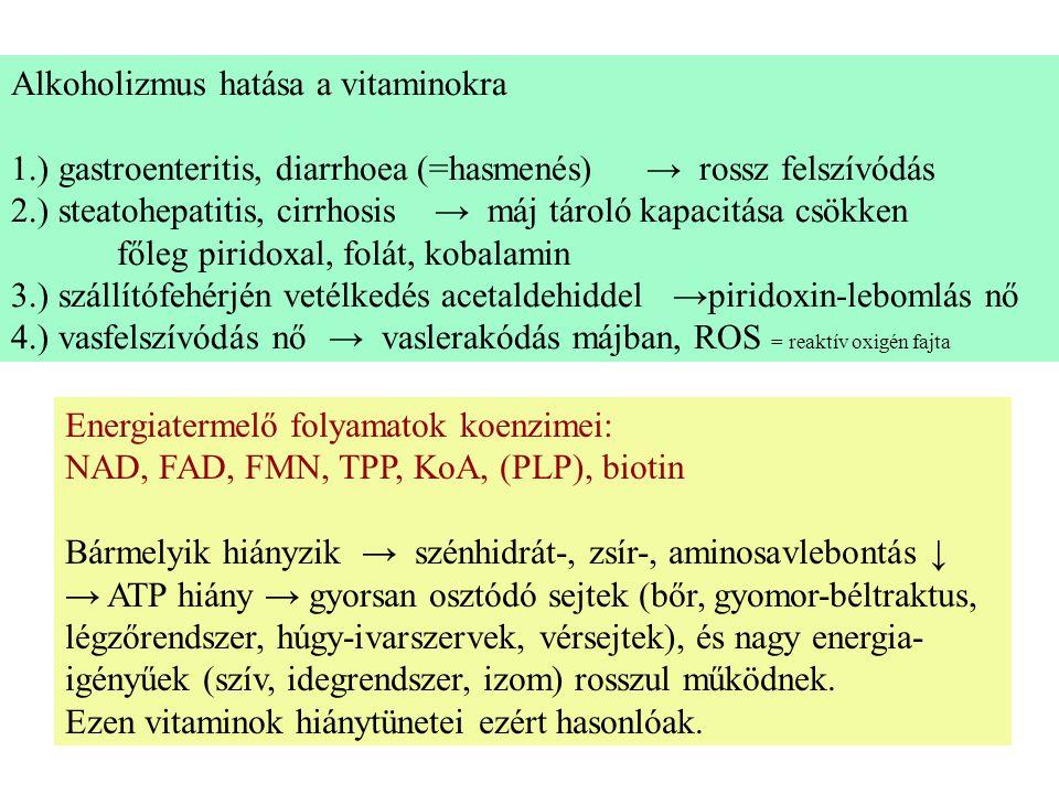 Alkoholizmus hatása a vitaminokra 1.) gastroenteritis, diarrhoea (=hasmenés)→ rossz felszívódás 2.) steatohepatitis, cirrhosis→ máj tároló kapacitása csökken főleg piridoxal, folát, kobalamin 3.) szállítófehérjén vetélkedés acetaldehiddel →piridoxin-lebomlás nő 4.) vasfelszívódás nő→ vaslerakódás májban, ROS = reaktív oxigén fajta Energiatermelő folyamatok koenzimei: NAD, FAD, FMN, TPP, KoA, (PLP), biotin Bármelyik hiányzik → szénhidrát-, zsír-, aminosavlebontás ↓ → ATP hiány → gyorsan osztódó sejtek (bőr, gyomor-béltraktus, légzőrendszer, húgy-ivarszervek, vérsejtek), és nagy energia- igényűek (szív, idegrendszer, izom) rosszul működnek.