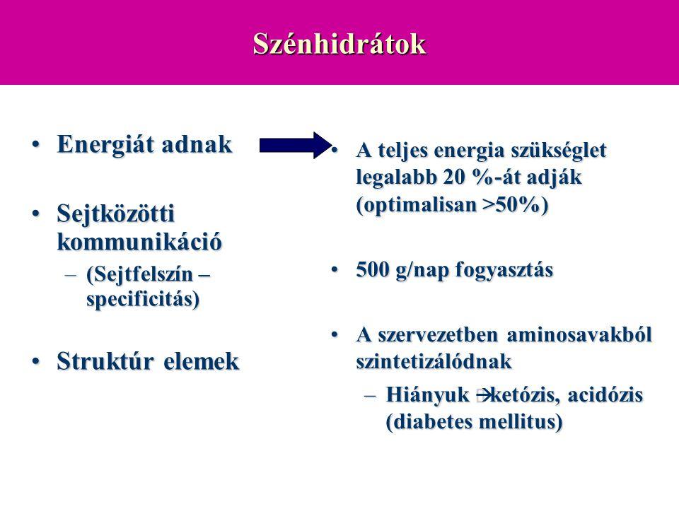 Felszívódás Glukóz, galaktóz: –Na + kontranszport Fruktóz: –Na + -tól független facilitált diffuzió