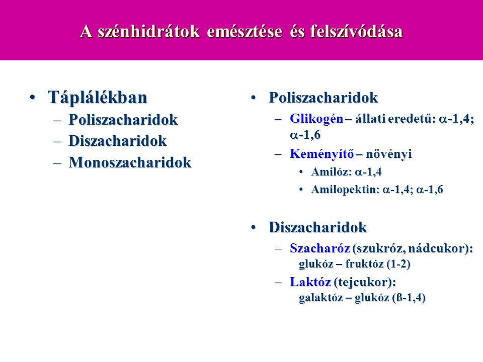 A szénhidrátok emésztése és felszívódása TáplálékbanTáplálékban –Poliszacharidok –Diszacharidok –Monoszacharidok PoliszacharidokPoliszacharidok –Gliko