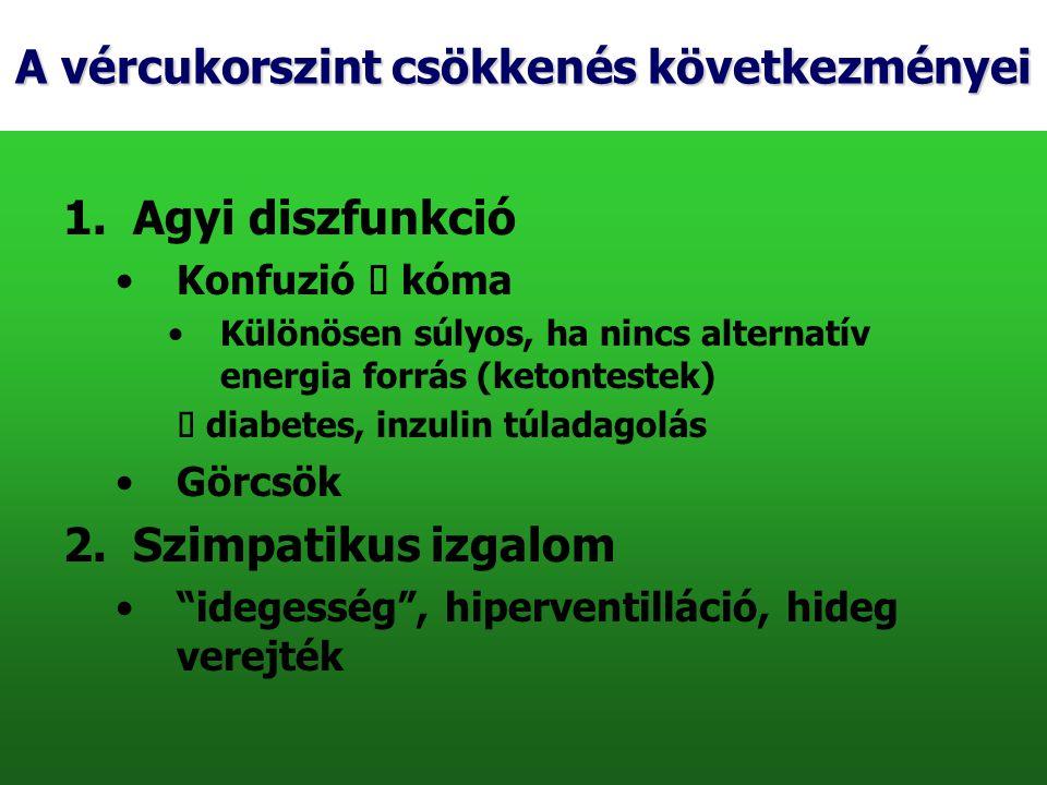 A vércukorszint csökkenés következményei 1.Agyi diszfunkció Konfuzió  kóma Különösen súlyos, ha nincs alternatív energia forrás (ketontestek)  diabe